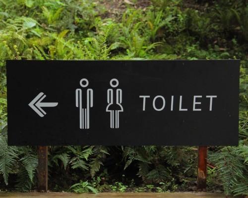 wynajem toalet przenosnych oprogramowanie 500x400 - Możliwości oprogramowania do obsługi kabin WC